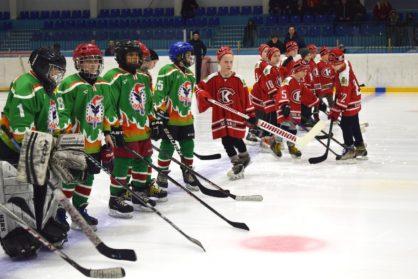 Открытый Турнир по хоккею среди детских команд 2008-2009 гг.р