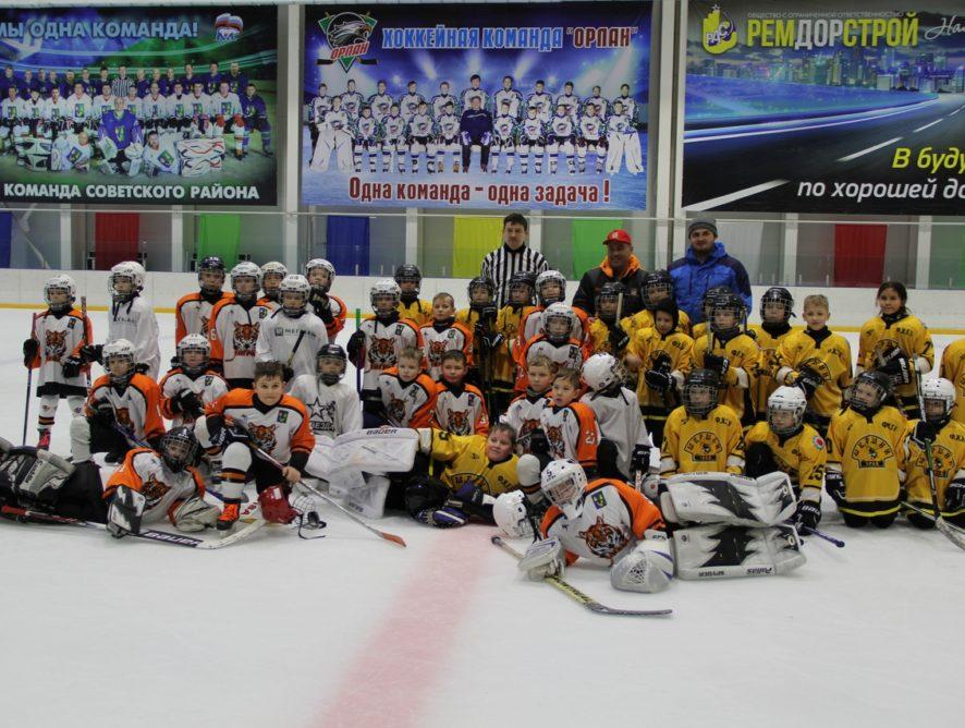 Товарищеская встреча по хоккею с шайбой среди детей 2010-2011 г.р., посвящённая Международному женскому дню 8 марта.