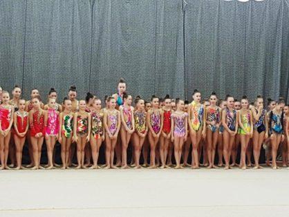 Воспитанницы МАУ ФОК «Олимп» приняли участие в региональных соревнованиях по художественной гимнастике