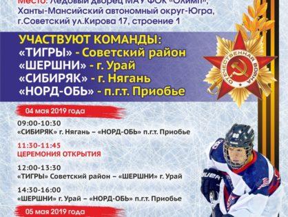 Открытый турнир по хоккею с шайбой 2019