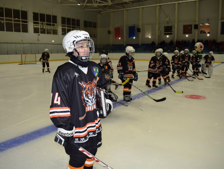 II (Региональный) этап всероссийских соревнований юных хоккеистов «Золотая шайба»